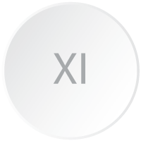 Logicity is a Crystal Reports viewer 11 (or XI) and is represented by a branding-styled circle with the roman numerals XI